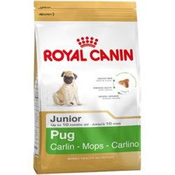 Royal Canin Pug (Mops) Junior 1
