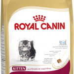 Royal Canin Persian Kitten 2 Kg PM
