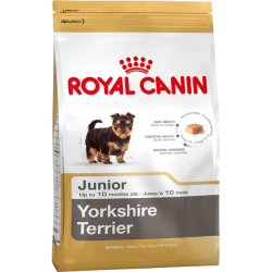 Royal Canin Yorkshire Puppy 1