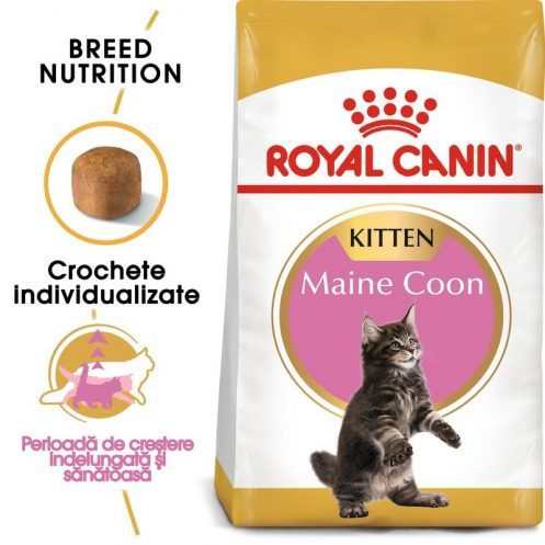 Royal Canin Maine Coon Kitten + CADOU