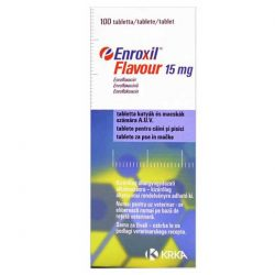 Enroxil Flavour 15 mg