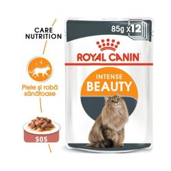 Royal Canin Intense Beauty Gravy