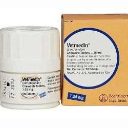 Vetmedin 1.25 mg 100 tablete masticabile