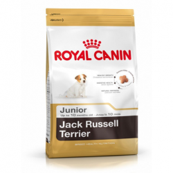 ROYAL CANIN Jack russell terrier junior 1.5 kg