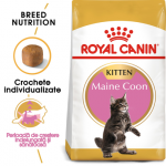ROYAL CANIN kitten maine coon 10 kg FER
